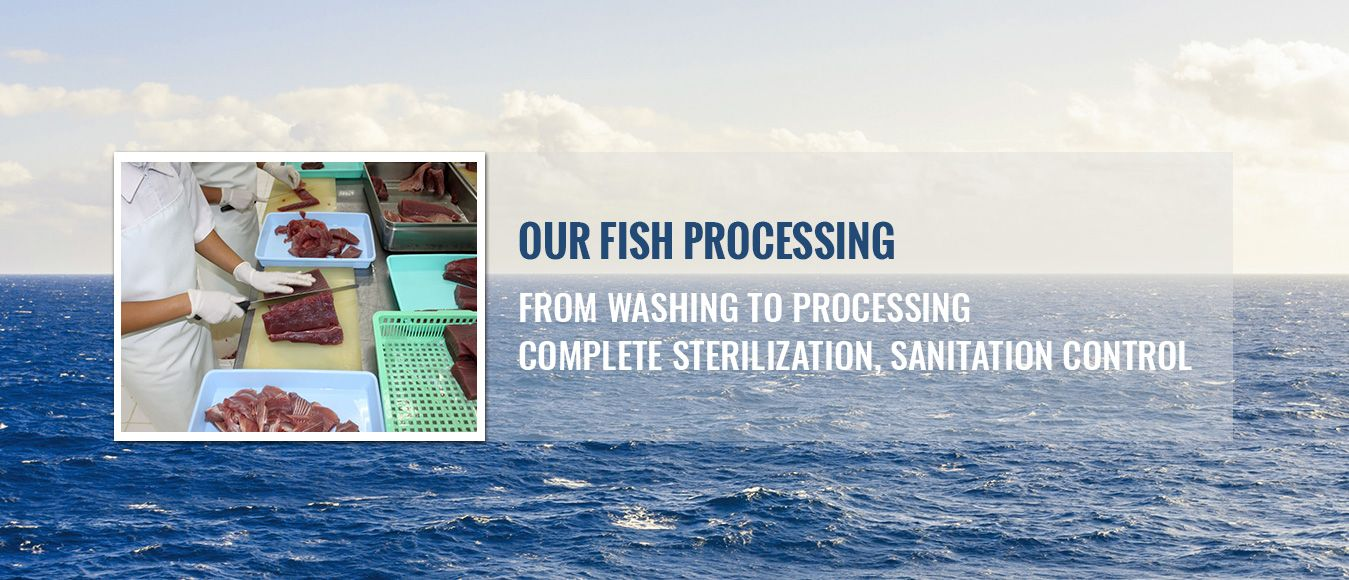 Fish processing - from washing to processing, complete sterilization, sanitation control
