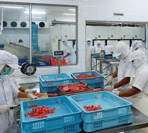 生鮮冷凍食品卸売販売